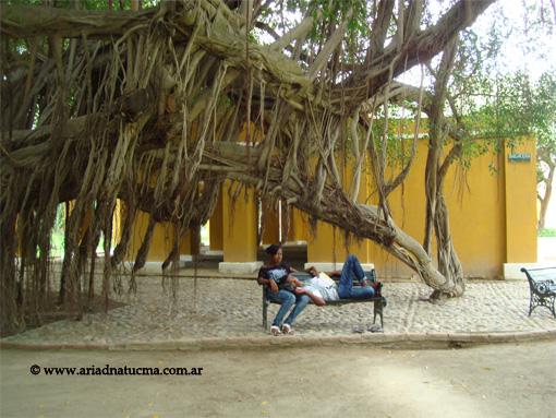 SantaMarta-04-2010